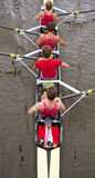 Coxed four Stock Images