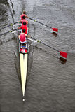 Coxed four from above Royalty Free Stock Photos