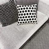Coxins preto e branco do às bolinhas em um sofá Fotografia de Stock