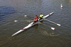 Coxless pair on River Avon, Stratford-upon-Avon. Stock Photos