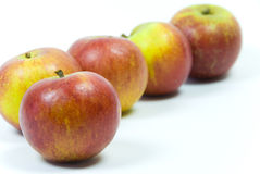 Coxsche Pippinapfeläpfel auf weißem Hintergrund Lizenzfreie Stockfotografie