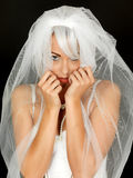 Coy Shy Young Bride Portrait bonito Fotos de Stock Royalty Free