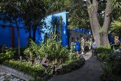 COYOACAN,墨西哥- 2016年10月28日:有La住处Azul庭院的蓝色议院  库存照片