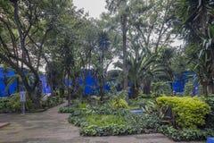 COYOACAN,墨西哥- 2016年10月28日:La住处Azul蓝色议院und庭院  图库摄影