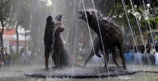 Coyoacan fontanna Fotografia Stock