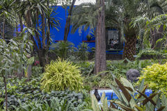 COYOACAN, MEXICO - OCT 28, 2016: Blue House und courtyard of La Casa Azul royalty free stock photo