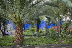COYOACAN, MEXICO - OCT 28, 2016: Blue House und courtyard of La Casa Azul royalty free stock image