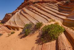 Coyote Buttes Stock Photography