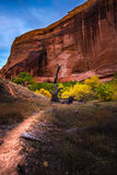 Coyote Gulch Hiking Trail Fall Colors Stock Image