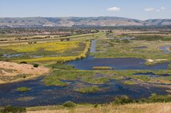 Coyote Hills Royalty Free Stock Photos