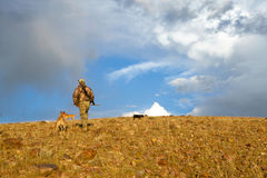 Coyote hunter and tracking dogs in arid landscape. A hunter with rifle and camouflage clothing hikes up an arid hill with two tracking dogs in golden sunrise Royalty Free Stock Image