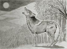 Coyote hurlant à la lune illustration libre de droits