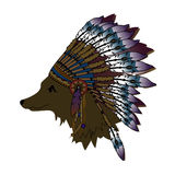 Coyote. In the Indian cap Stock Photo