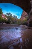 Coyote Natural Bridge Escalante Utah USA Fall Colors Royalty Free Stock Photo