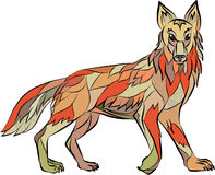 Coyote Side Isolated Drawing Royalty Free Stock Images