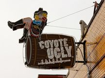 Coyote Ugly Saloon on Beale Street Memphis, TN Stock Image