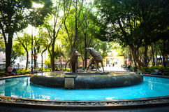 Coyotes fountain in Coyoacan, Mexico City Royalty Free Stock Image
