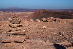 Coyotesteen Stock Afbeeldingen