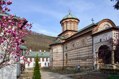 Cozia kloster, Valcea Rumänien Royaltyfria Foton
