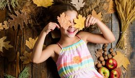 Coziest things about fall. Kid cute girl relax wooden background autumn attributes top view. Child long hair with dry stock image