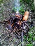 Cozimento das salsichas na floresta no fogo - foto vertical Foto de Stock Royalty Free