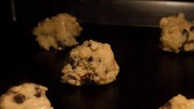 Cozimento do timelapse das cookies dos pedaços de chocolate e de passa vídeos de arquivo