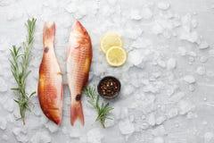 Cozimento dos peixes do salmonete vermelho Imagem de Stock Royalty Free