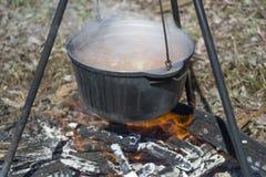 Cozimento em um fogo na mola fotos de stock royalty free