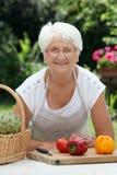 Cozimento idoso da mulher imagens de stock royalty free