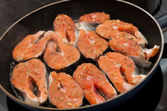 Cozimento Salmon Imagem de Stock Royalty Free