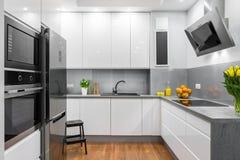 Cozinha branca na ideia moderna do estilo Foto de Stock