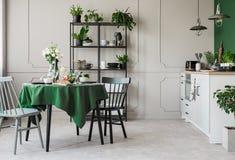 Cozinha cinzenta e verde elegante na casa de cortiço fotos de stock royalty free