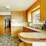 Cozinha com os armários de armazenamento rústicos Fotografia de Stock