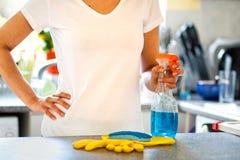 Cozinha da limpeza da mulher fotografia de stock royalty free