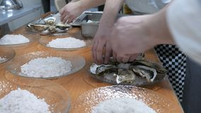 Cozinha do restaurante, muitas ostras em uma grande bandeja Localizado no gelo com limão Decorado antes de servir o convidado vídeos de arquivo