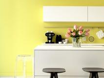 Cozinha luxuoso com dispositivos de aço inoxidável Fotos de Stock Royalty Free