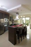 Cozinha moderna luxuoso Imagens de Stock