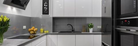 Cozinha moderna, panorama Foto de Stock Royalty Free
