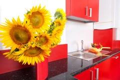 Cozinha vermelha Imagem de Stock Royalty Free