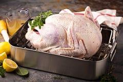 Cozinhando a ação de graças Turquia Foto de Stock Royalty Free