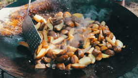 Cozinhando batatas em um caldeirão sobre uma fogueira na rua vídeos de arquivo