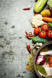 Cozinhando a canja de galinha com vegetais em um grande potenciômetro Fotos de Stock Royalty Free