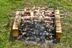 Cozinhando a carne em espetos sobre os carvões imagem de stock