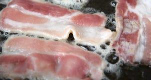 Cozinhando a carne na grade vídeos de arquivo