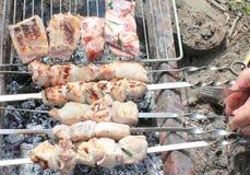 Cozinhando a carne nos carvões foto de stock