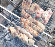 Cozinhando a carne nos carvões imagem de stock royalty free