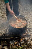 Cozinhando a goulash imagem de stock