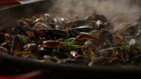 Cozinhando mexilhões roasted cozinhados na frigideira grande filme