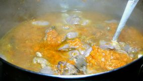 Cozinhando o alimento caseiro A goulash ou a sopa grossa de miúdos de ave da galinha com cenouras fervem em uma caçarola filme