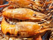 Cozinhando o camarão da grade Fotografia de Stock